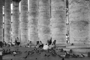 Pigeons outside of St. Peter's Basillica